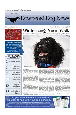 Downeast Dog News
