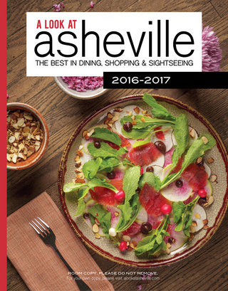 A Look at Asheville