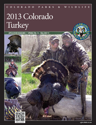 Colorado Turkey Brochure