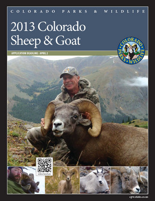 Colorado Sheep and Goat Brochure