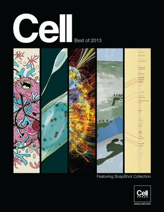 Cell Best of 2013