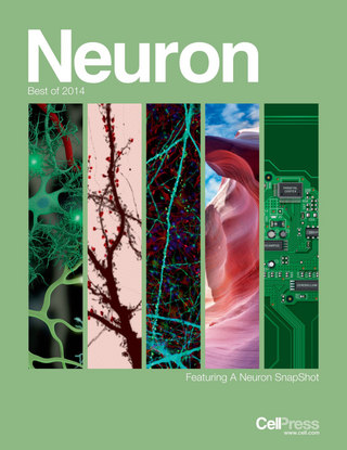 Neuron Best of 2014