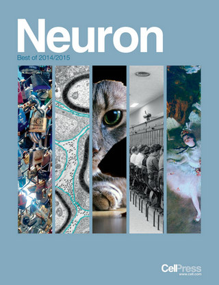 Neuron Best of 2014/2015
