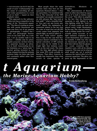 The Fluorescent Aquarium
