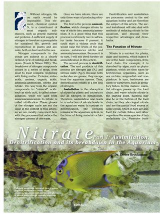 Nitrate Part 1: Assimilation, Denitrification and its Breakdown in the Aquarium
