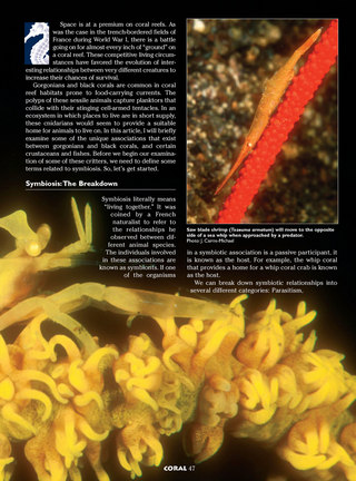 Commensal Critters: Animals that Live on Gorgonians and Black Corals