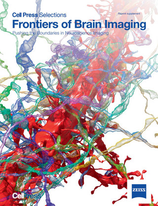 Frontiers of Brain Imaging