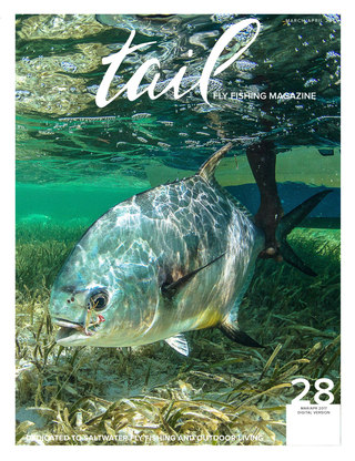 Issue 28 - March/April 2017