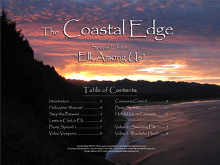 The Coastal Edge