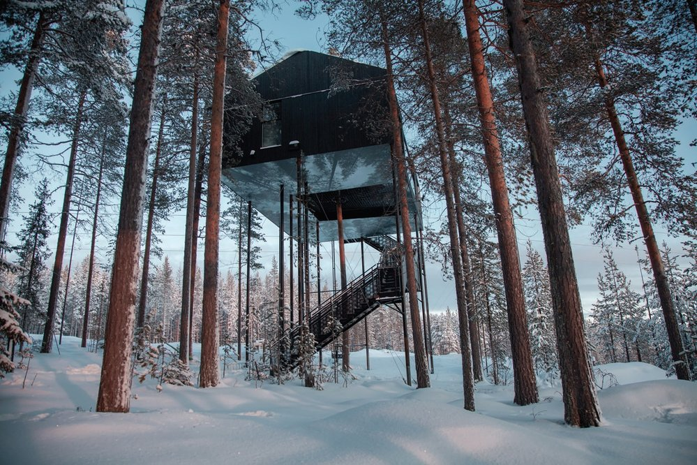 Sweden's Sanctuary In The Trees 1