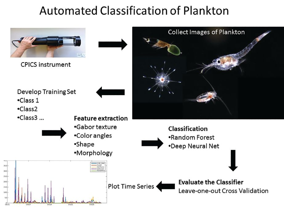Figure 1. Workflow for embedded, automated classification of plankton on CPICS instrument.