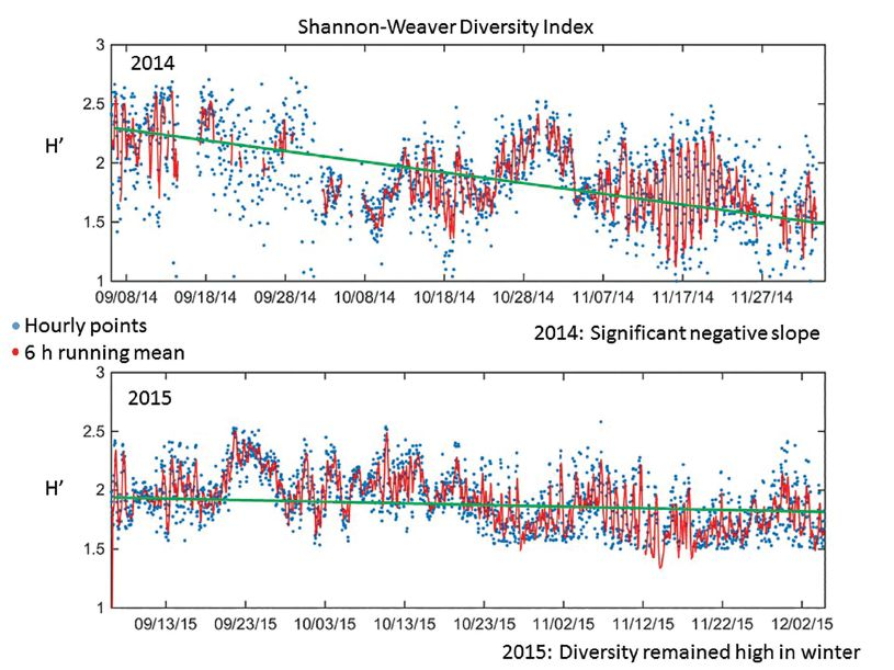 Figure 3. Time series of Shannon-Weaver Biodiversity Index (H') for 21 plankton classes classified automatically for the autumn months in 2014 and 2015 at a long-term observatory site in the Kuroshio Current south of Tokyo, Japan. Blue dots are hourly calculations of H', red lines are 6-hour running means, and green lines are linear regressions. Notes: 1) very high variability in H' hour to hour; and 2) the negative slope in 2014 and not in 2015, suggesting that biodiversity did not decrease in 2015 as it normally should due to lack of decreasing fall temperature.