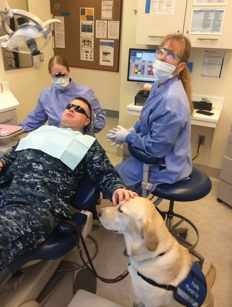Brad is a soothing presence for Navy Captain Patrick Mcgroarty as he visits the dentist at the Naval Health Clinic Patuxent River's Dental Clinic in Maryland.