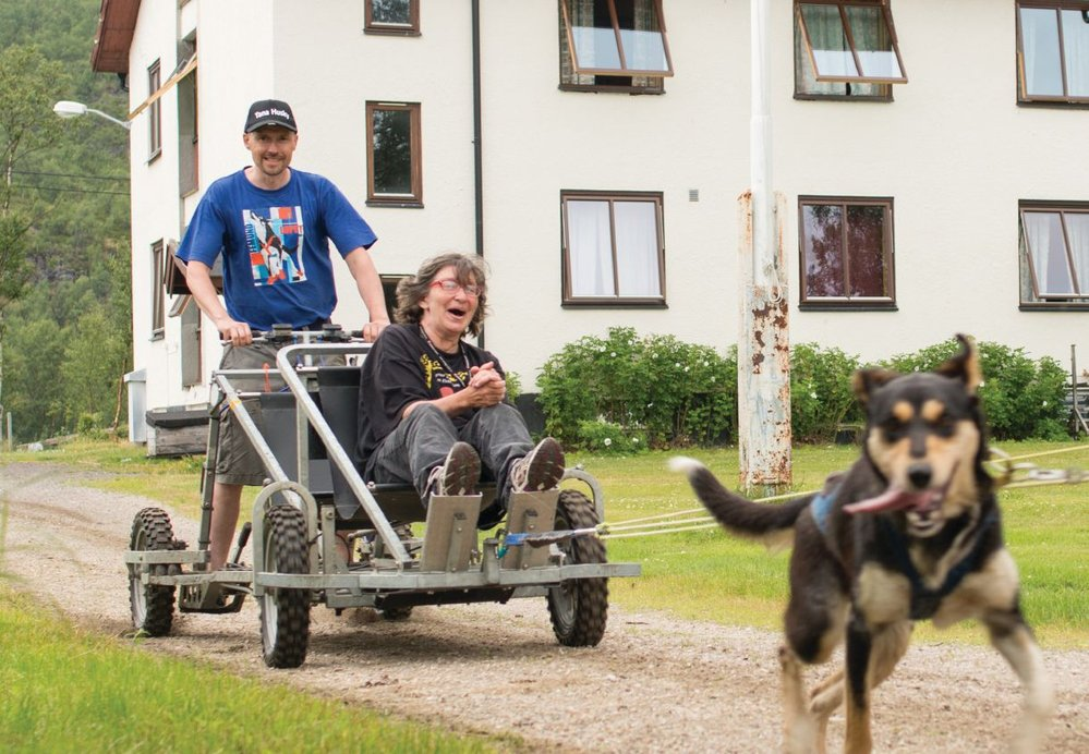 Dog mushing with its speed and animal fury is a popular pastime at the camp.