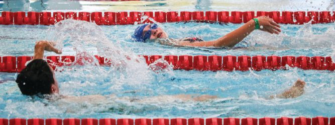 Swimmers compete in the International Swimming Gala.