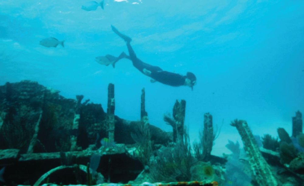 In Biscayne National Park, off the southern tip of Florida, Knighton followed an underwater trail from shipwreck to shipwreck. Photo credit: CBS News.