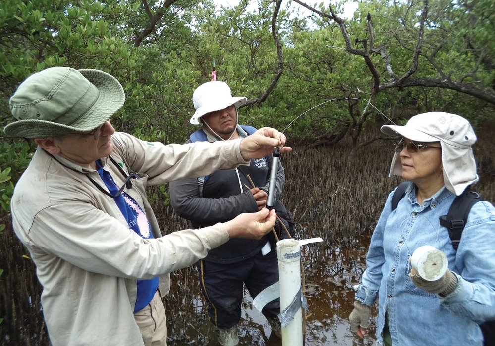 Jorge Lopez-Portillo and Ana Lara, INECOL, conduct regular monitoring within the coastal lagoon at Tuxpan.