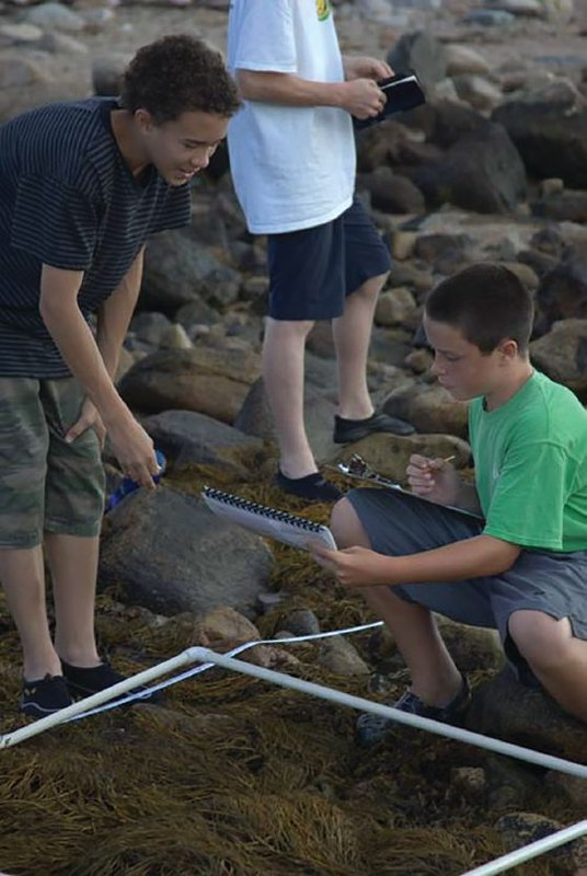 Summer science in New England. Campers follow NaGISA protocol to sample along a rocky shore at low tide.