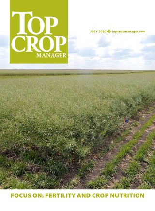 Focus On: Fertility and Crop Nutrition 2020
