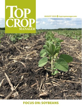 Focus On: Soybeans 2020