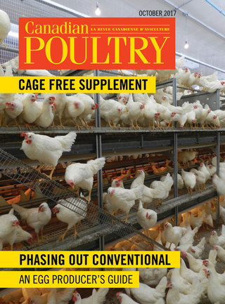 Cage Free Supplement_October 2017