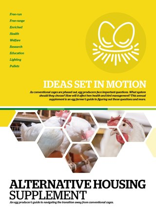 AlternativeHousing Supplement 2019
