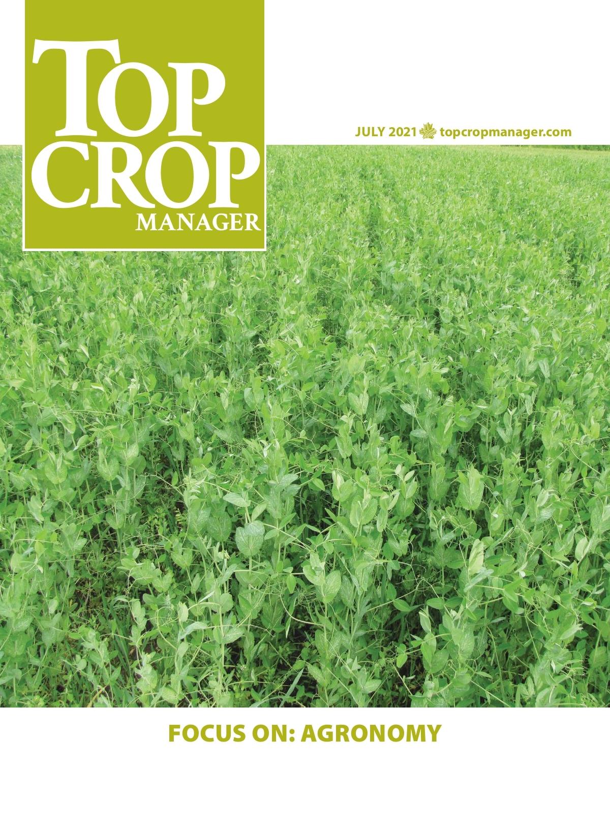 Focus on: Agronomy