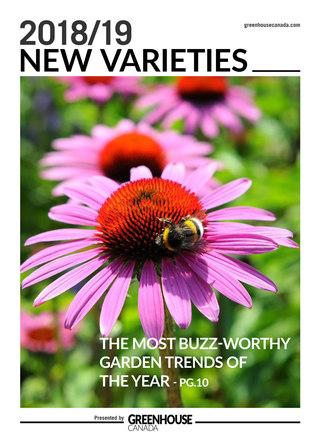 Greenhouse New Varieties 2018/19