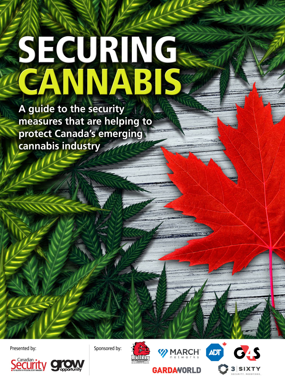 Securing Cannabis 2019