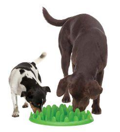 GREEN Slow Dog Feeder