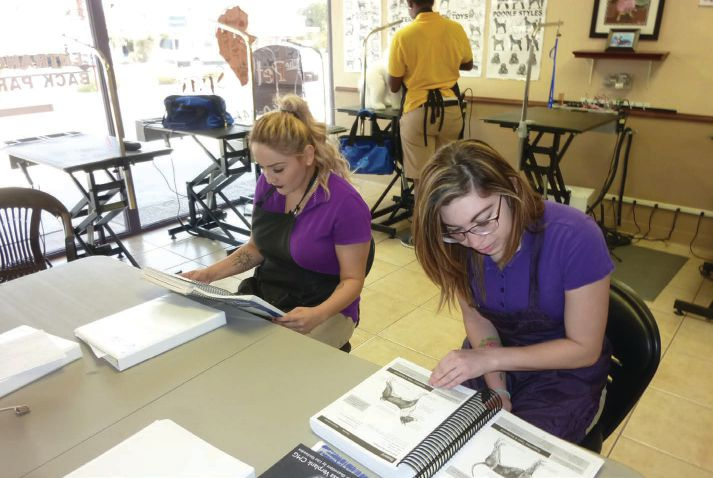Golden Paws Pet Styling Academy