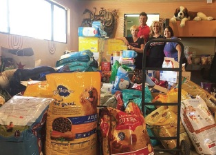 Mike and the team at Loving All Animals with donated food—the outpouring was amazing!