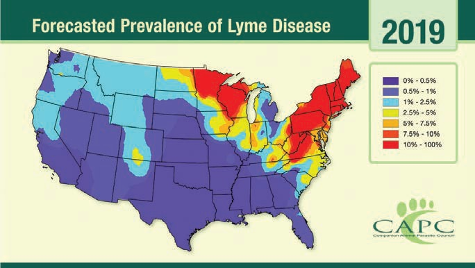 Forecasted Prevalence of Lyme Disease