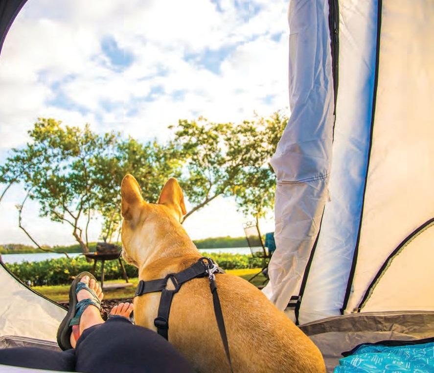 Tenting at St. Petersburg, Florida, KOA Holiday