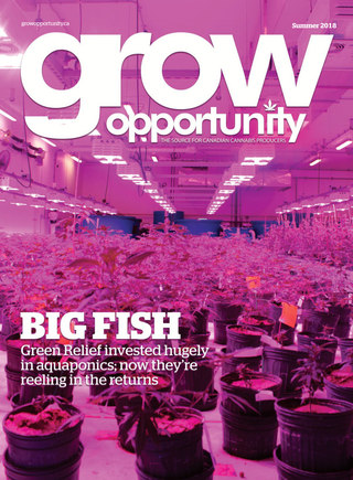 Grow Opportunity cover