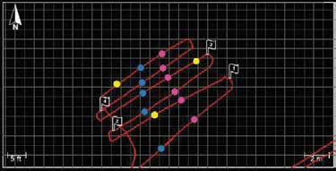 Figure 4: MapView showing linear features (blue and pink) and point targets (yellow).