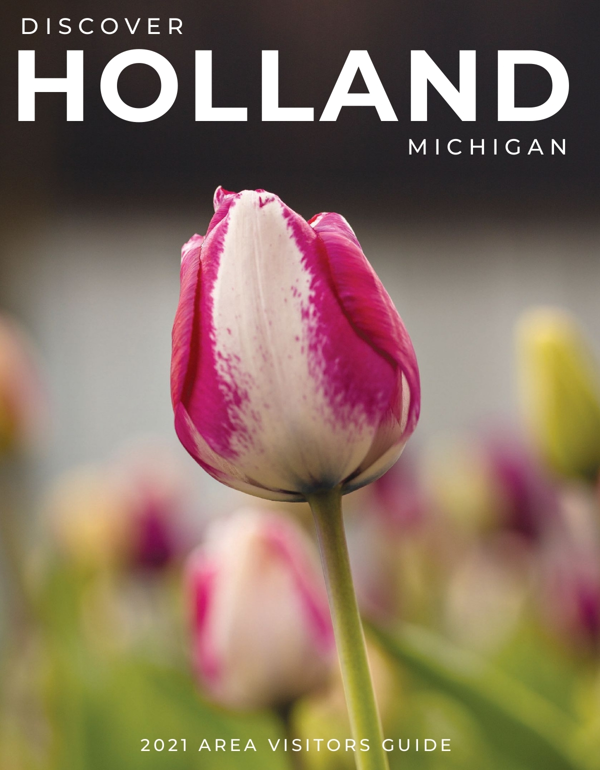 2020 Holland Area Visitors Guide