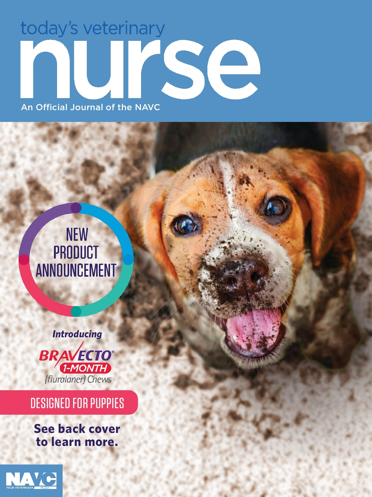 Today S Veterinary Nurse Winter 2021