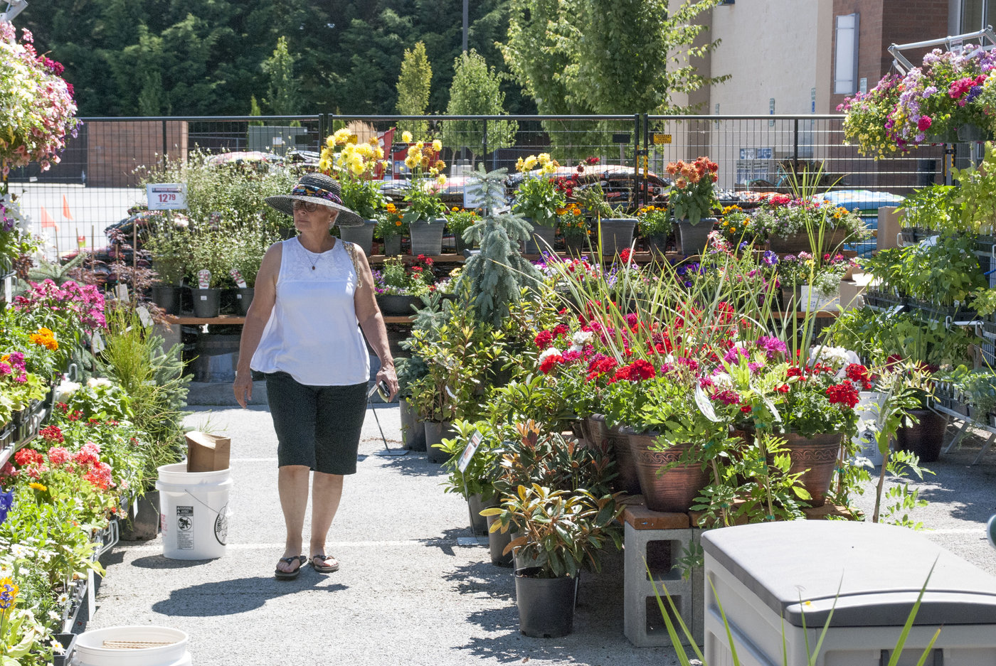Lawn and garden has been greatly expanded to sell more green goods.