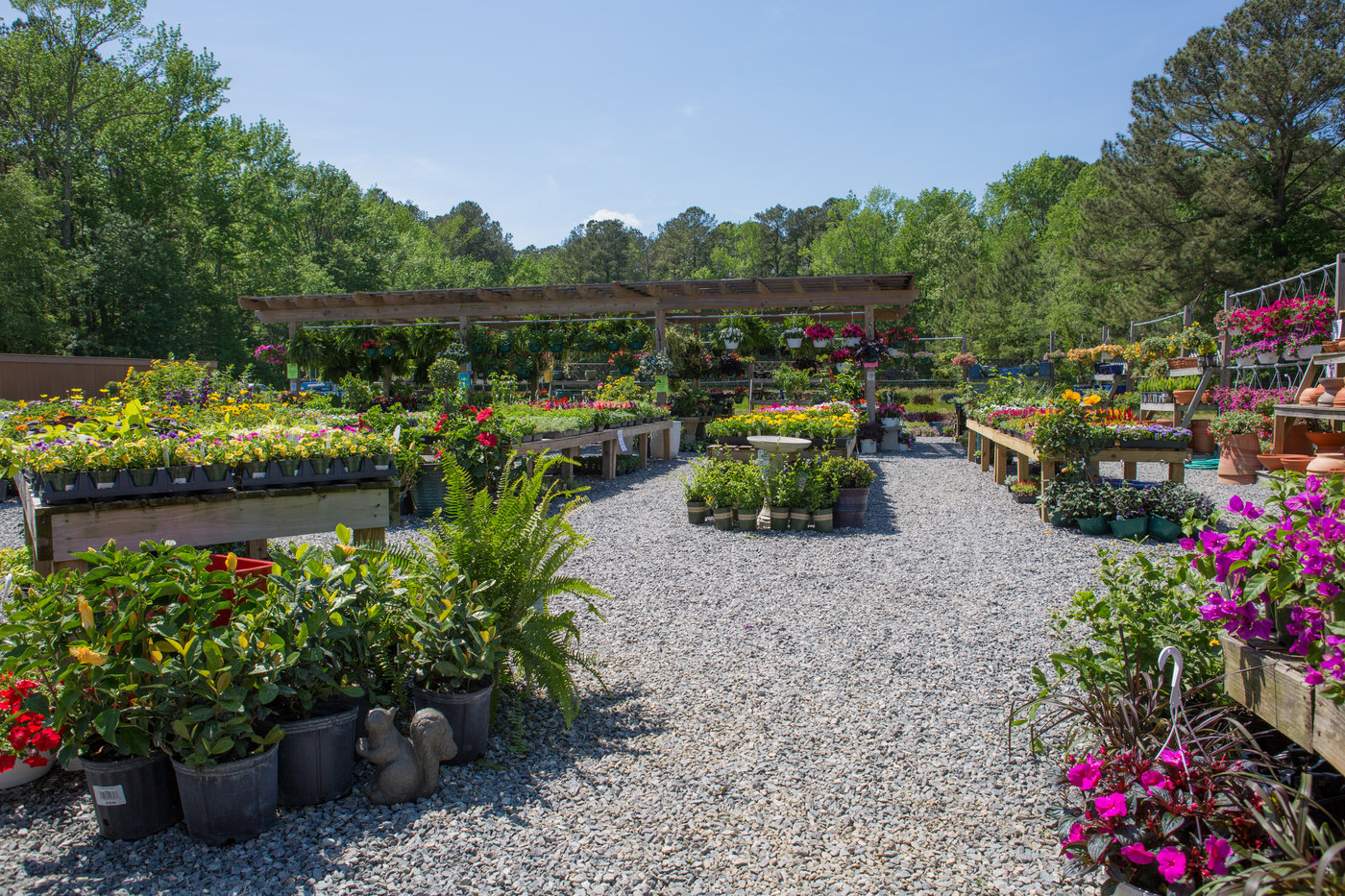 The 12,000-square-foot garden center is a return to Kathryn Tatterson's family roots with a wholesale greenhouse business.