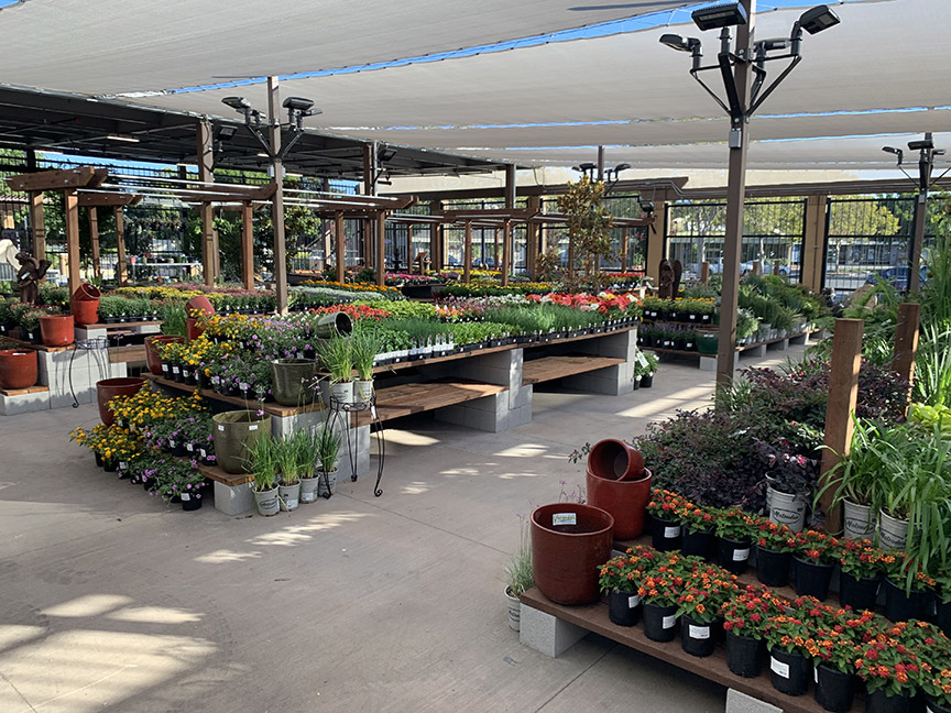 Orchard Supply stores were long known for their impressive garden centers, so Outdoor Supply Hardware carries on that tradition.
