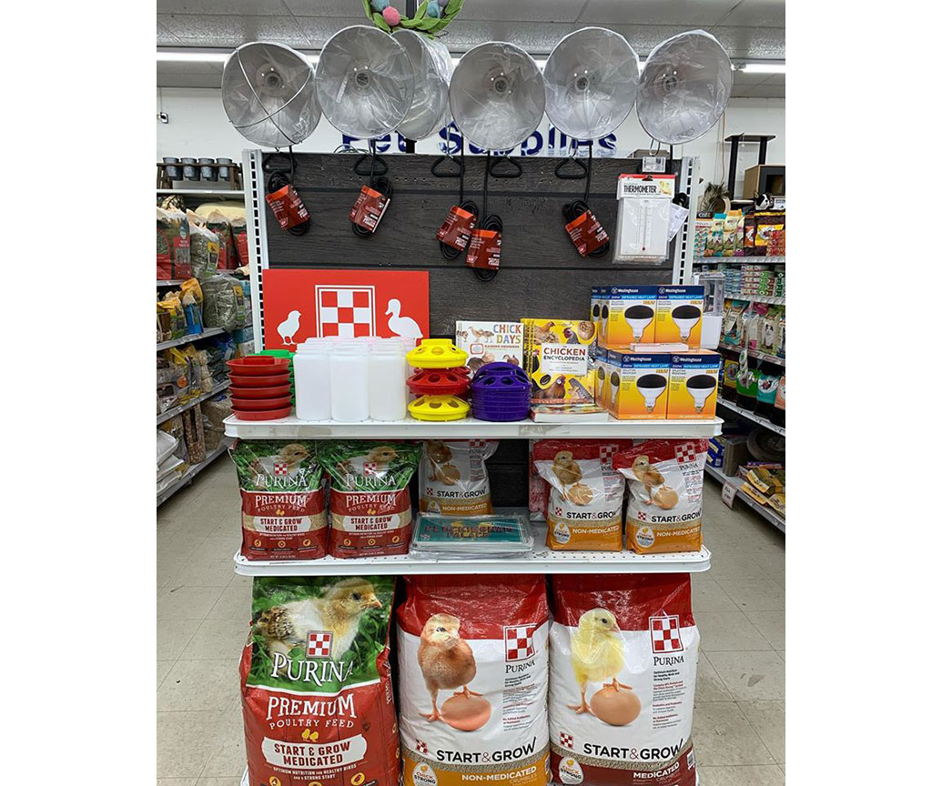 Brandywine Ace Pet & Farm in West Chester, Pa., promotes chicken supplies on an end cap.