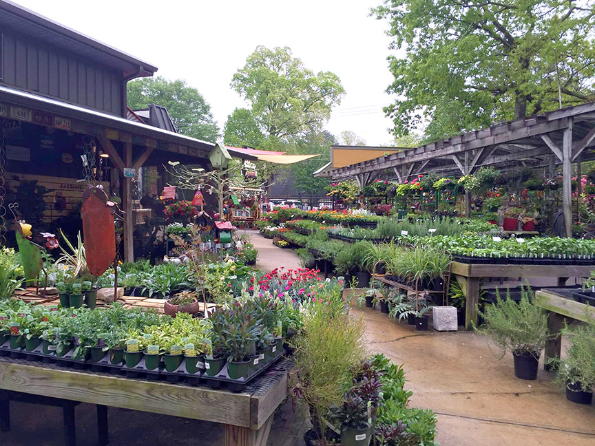 The garden center was recently expanded by 3,000 square feet.